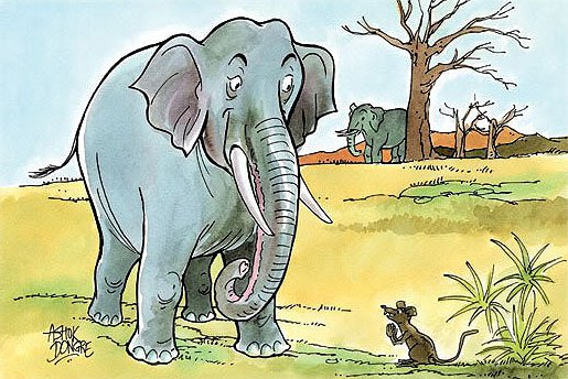 Elephant and mice